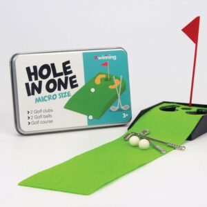 Hole-in-one-mini-golf-game