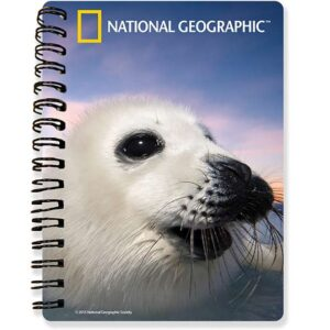 harp_seal_notebook