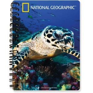 sea_turtle_notebook