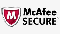 mcafee-secure-icon